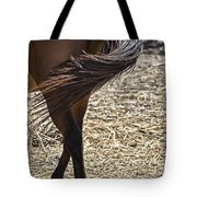 Horse With No Name V4 Tote Bag