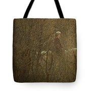 Horseback In The Garden Tote Bag by Lenore Senior