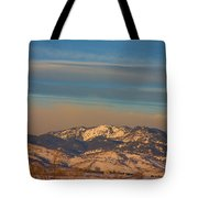 Horses And Moon Tote Bag