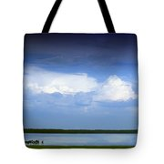 Horses By Lake On Overcast Day Tote Bag