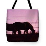 Horses Grazing At Dawn  Tote Bag