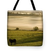 Horses In The Morning Mist, North Tote Bag