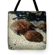 Horseshoe Crabs Tote Bag