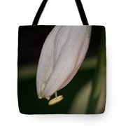 Host Blossom With Anther Protuding Tote Bag