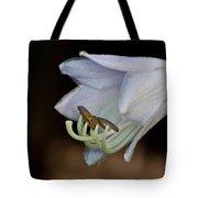 Hosta Blossom 1 Tote Bag