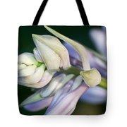 Hosta Blossoms Tote Bag