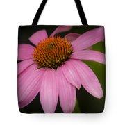 Hot Pink Coneflower Tote Bag