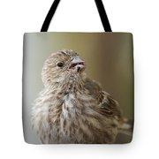 House Finch Profile Tote Bag