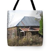 House Indian Gap Tx Tote Bag