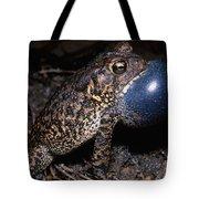 Houston Toad Tote Bag