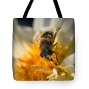 Hoverfly On White Flower Tote Bag