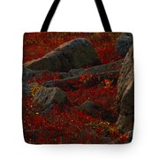 Huckleberry Bushes And Multi-hued Tote Bag