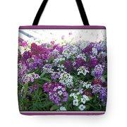 Hues Of Purple Phlox Tote Bag