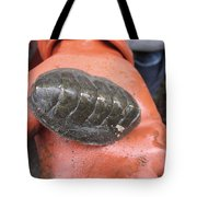Huge Sea Bug Tote Bag