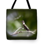 Hummingbird - Bird Tote Bag