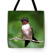 Hummingbird - Male - Will Soon Be Grown Tote Bag