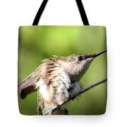 Hummingbird - Ruby-throated Hummingbird - Stretch Time Tote Bag