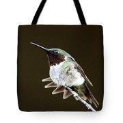 Hummingbird - Wide Tail Tote Bag