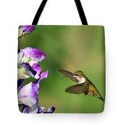 Hummingbird 2 Tote Bag