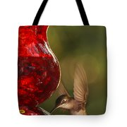 Hummingbird At The Feeder Tote Bag