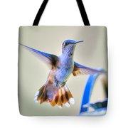 Hummingbird At The Feeder Tote Bag