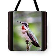 Hummingbird Card Tote Bag