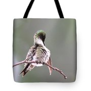 Hummingbird - Cleaning Up Tote Bag