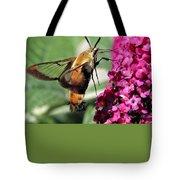 Hummingbird Clearwing Moth Tote Bag