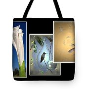 Hummingbird Collage 2009 Tote Bag