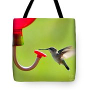 Hummingbird Drinking Tote Bag