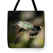 Hummingbird Fly By Tote Bag