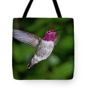 Hummingbird Glory Tote Bag