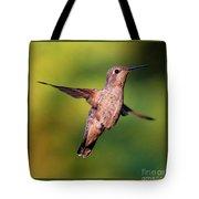 Hummingbird Hello Tote Bag