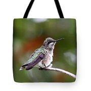 Hummingbird - Little Friend Tote Bag