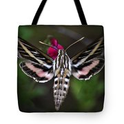 Hummingbird Moth - White-lined Sphinx Moth Tote Bag