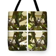 Hummingbird Mother Feeding Her Two Babies Tote Bag