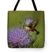 Hummingbird Or Clearwing Moth Din178 Tote Bag