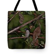 Hummingbird Waiting For Dinner Tote Bag