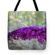 Hummingbird's Delight Tote Bag