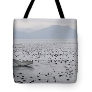 Humpback Whale Diving Amid Seabirds Tote Bag