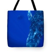 Humpback Whale Singer And Joiner Maui Tote Bag