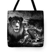 Hungry Lion Tote Bag