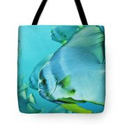 Hunting For Plankton, A School Tote Bag
