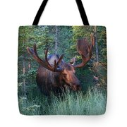 Hunting Some Munchies Tote Bag