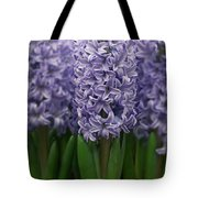Hyacinth Hyacinthus Sp Skyline Variety Tote Bag