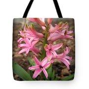 Hyacinth Named Pink Pearl Tote Bag