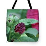 Hybiscus Bud Tote Bag