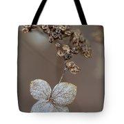 Hydrangea Arborescens Dry Flower Head In Winter Tote Bag