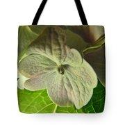 Hydrangea Macro Tote Bag