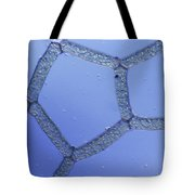 Hydrodictyon Sp. Algae, Lm Tote Bag